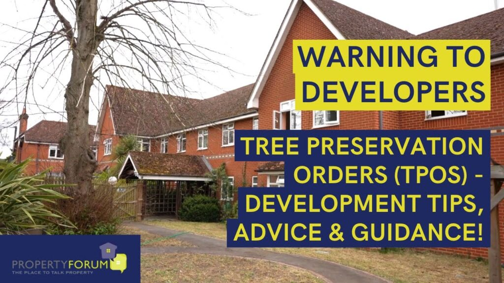 Property Developers Beware - Don't Let Tree Protection Orders Catch You Out!